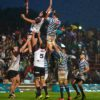 Pukke bounce back in Varsity Cup